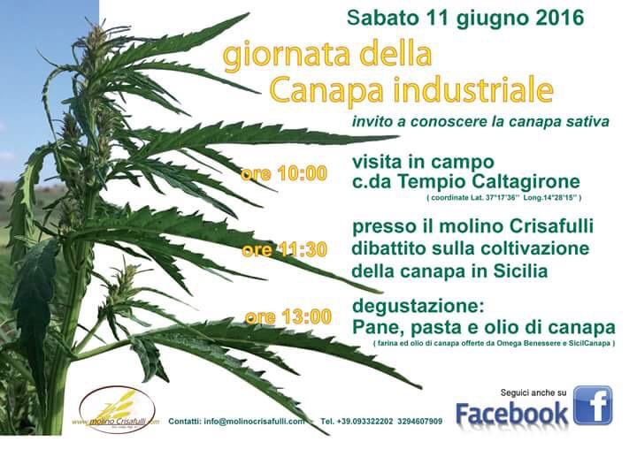 Giornata della Canapa industriale Sicilia